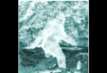 Bigfoot, Multiple Sightings & Eyewitnesses - Minerva Monster, Beast of Whitehall
