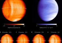 Huge Structure Found on Venus, Solar Systems Collapsing Says NASA Scientist
