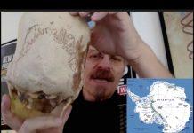 Aliens Found in Antarctica - Unknown DNA Discovered