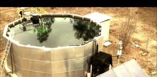 How to Turn your Pool into a Power Plant & NWO/War Games Discussed