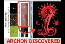 """New Lens Technology Discovers """"Archon"""" Worm Looking, Invisible Aliens Spying on Secret Facilities"""