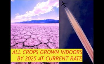 "Ex NASA Contractor Leaks, ""Ozone's Current Rate of Decay, by 2025 Crops Won't Grow Outside"""