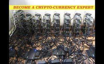 Will Bitcoin become the Gold Standard in Electronic Currency? We ask the Experts
