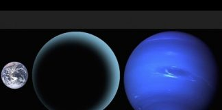 Evidence of Giant Planet in Solar System, White Paper & Binary Star, Planet 9 Analysis